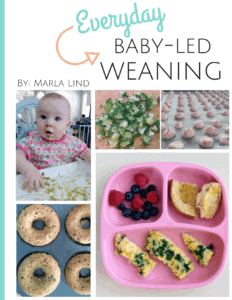 Everyday Baby-Led Weaning - Because I Said So, Baby