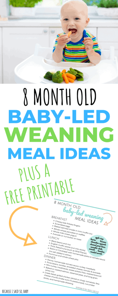 baby led weaning cookbook free download